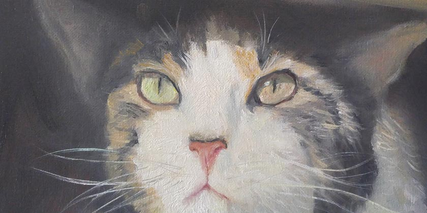 draw my life-how-to-paint-Old-Masters-cat-paintings